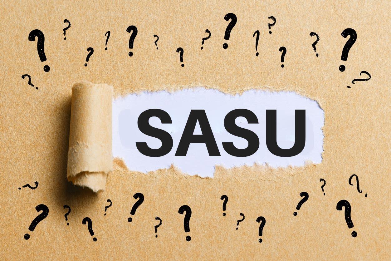 illustration SASU questions