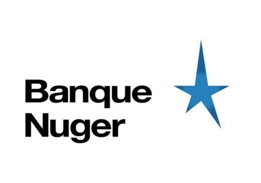Nuger Logo